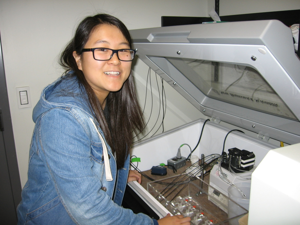 Irene Yin Liao, Wright lab volunteer